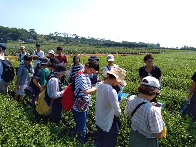 台日學生南投參訪 體驗大碗公茶、茶薰六覺