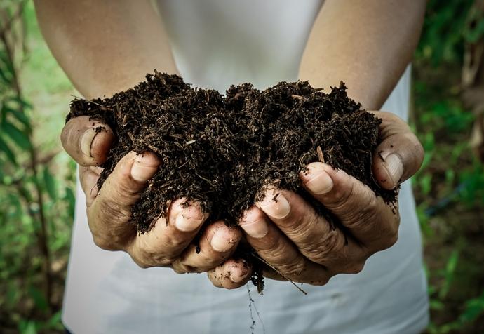 3小時內點廢為金 – 獨創TTT®酵素技術製成有機肥
