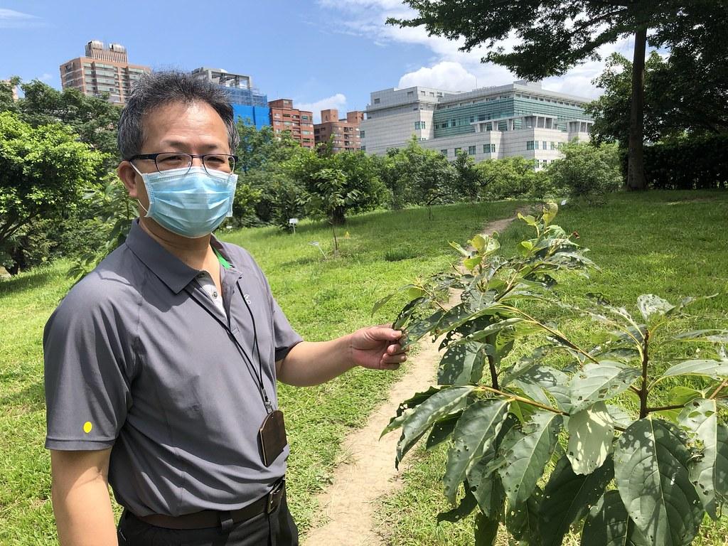 從學界轉任農委會林試所長,將一身功能貢獻植物保育,他對植物的理解格外引人注目。攝影:廖靜蕙