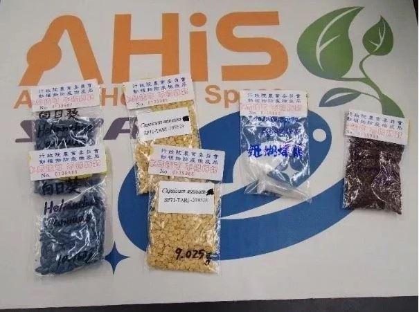 我國科研團隊選出姬蝴蝶蘭、向日葵、台灣藜、番椒4種植物種子上太空,總重量50公克。 圖/國家太空中心提供