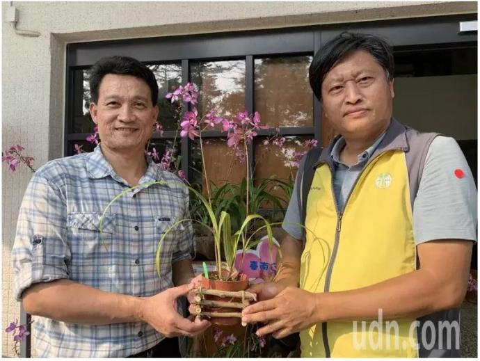 【媒體報導】花期10個月「粉苞舌蘭」 台南農改場授權新化林場開賣