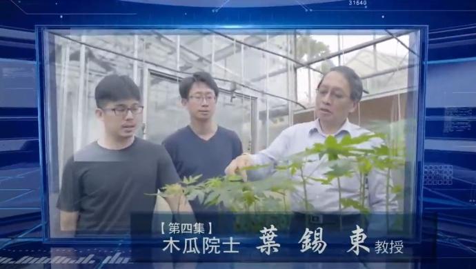 【公關組】木瓜研究揚名國際 興大人物誌紀錄葉錫東院士研究歷程